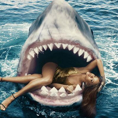 Köpekbalıkları Hakkında Şaşırtıcı Gerçekler